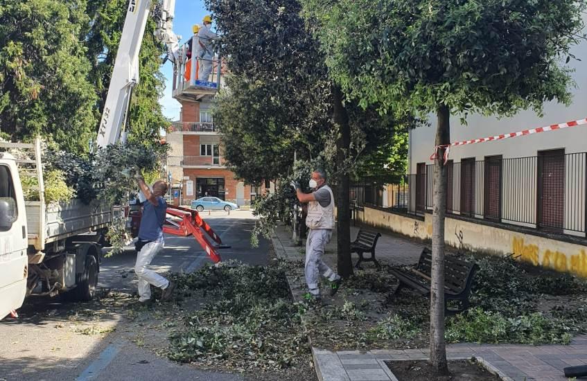 Manutenzioni per taglio erba e decoro urbano in corso ad Artena