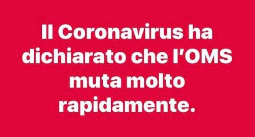 il coronavirus e l'oms