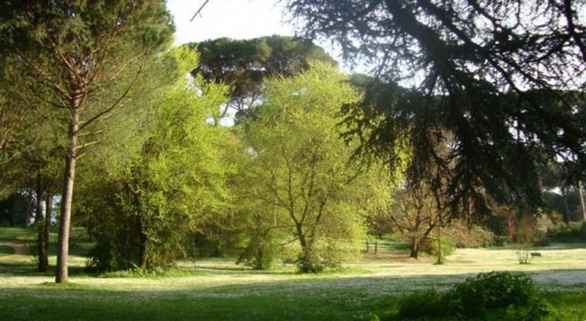villa ada riforestazione