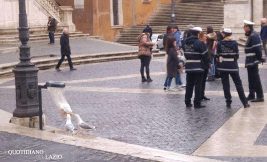 Roma cestini