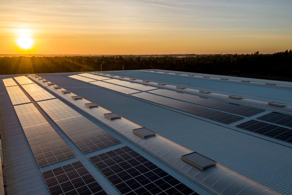 pannelli-solari-fotovoltaico