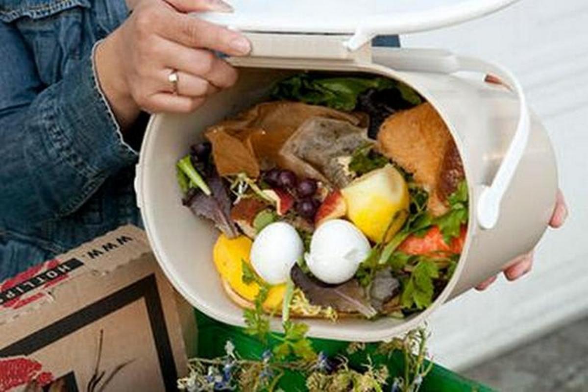 alimenti buttati nel secchio